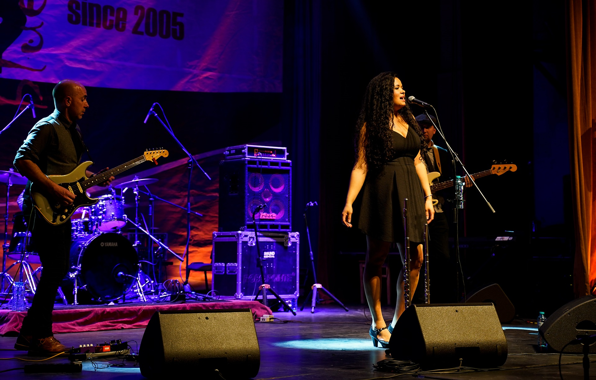 sighisoara-blues-festival-2019_2